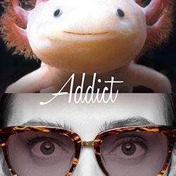 alook-addict